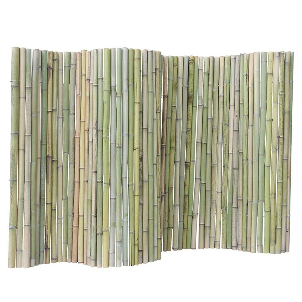 タール薄いです区画JIANFEI 木製 ボーダーフェンス竹製フェンス チャイルドガードレール 家の装飾 防水 耐食性 、3サイズ (Color : Green, Size : 100x200cm)
