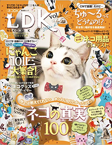 『ネコDK Vol.2 (晋遊舎ムック)』のトップ画像