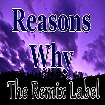 Reasons Why (Vibrant Proghouse Music Mix)