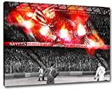 Ultras München Pyro, Bild auf Leinwand XL , fertig