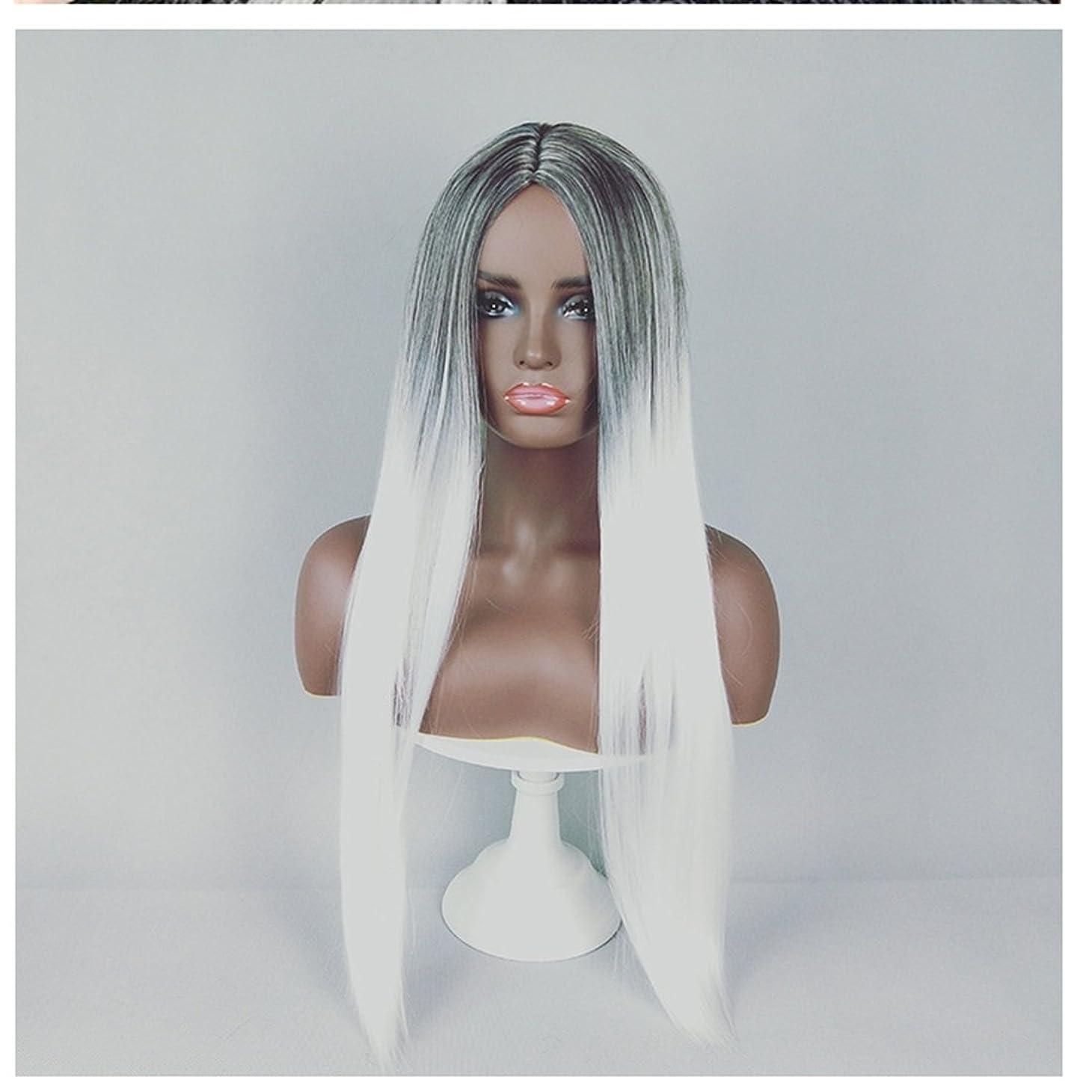 ブッシュファーザーファージュ霊JIANFU 合成 長い ストレート ヘア カラー グラデーション フル ウィッグ女性 ロングバンズ 耐熱 コスプレ/パーティー (Color : Black Gradient Pure White)