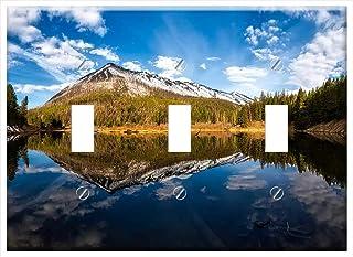 3dRose lsp/_91631/_2 Grove of Aspen Trees Near East Glacier Montana Us27 Cha0803 Chuck Haney Double Toggle Switch