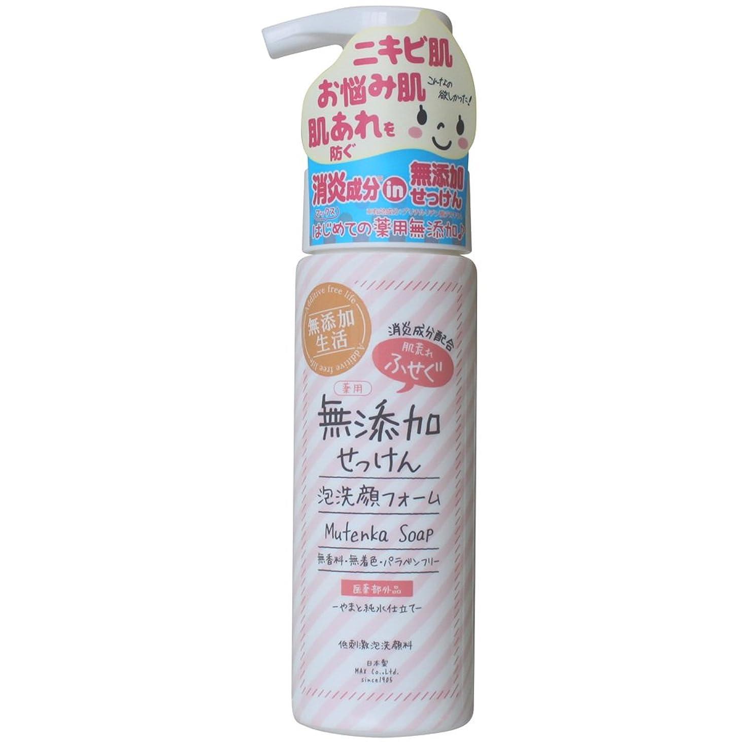 サージ考慮先例肌荒れ防ぐ薬用無添加 洗顔フォーム 200mL