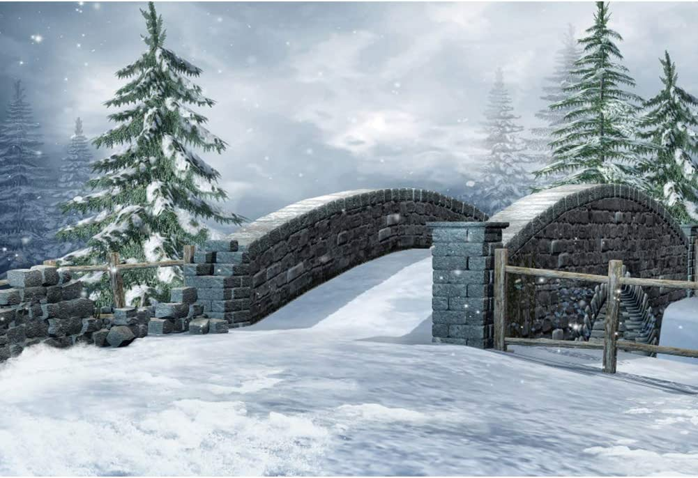 CSFOTO 10x6.5ft Winter Backdrop Winter Snowing Frozen Ice and Snow Wonderland Trees Road Stone Bridge Christmas and New Year Party Background for Photography Kids Adults Photo Vinyl Wallpaper