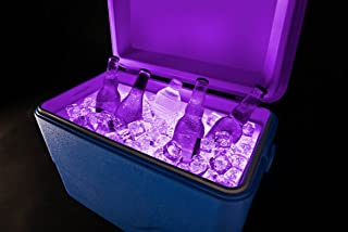 Best igloo light up cooler Reviews