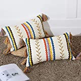 Bohemian Colorful Moroccan Lumbar Pillow Cover Set of 2, Boho Embroidered Tassel Pillow Case with Morocco Textured & Golden Leaf, Decorative Small Pillowcase for Couch Sofa Outdoor, 2 Pack 12'x20'