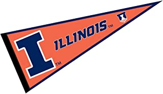 university of illinois at chicago pennant