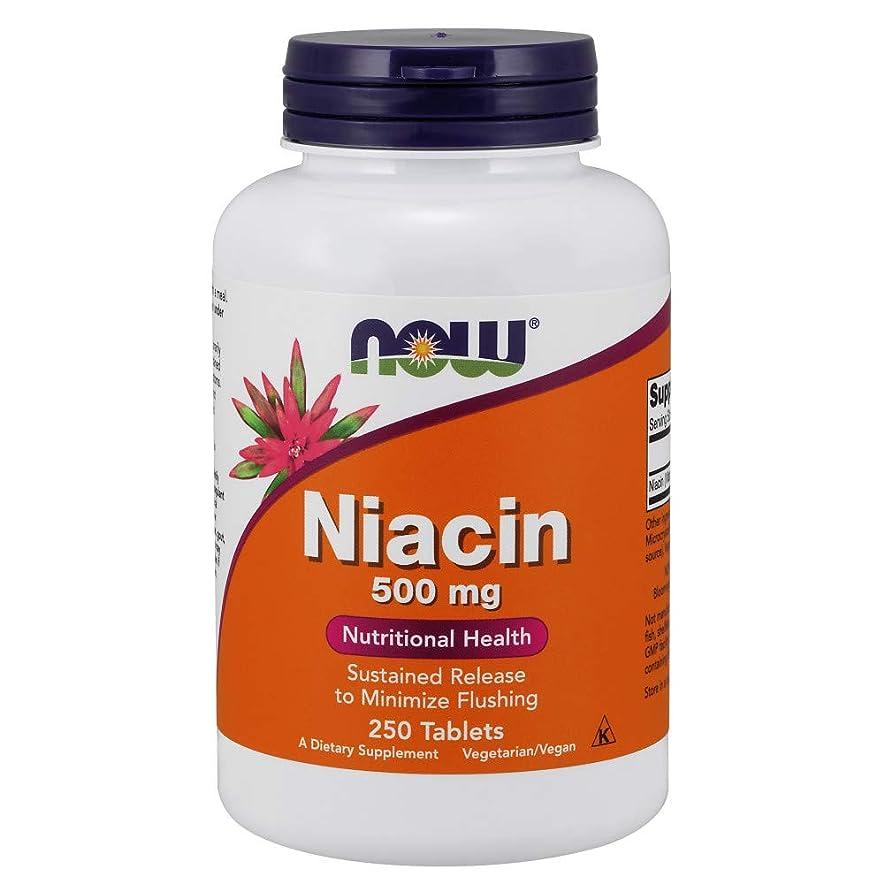 識別記念碑刺します[海外直送品] ナウフーズ  Niacin Tr 250 Tabs 500 mg