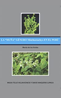 """LA """"MUÑA"""" GÉNERO Minthostachys EN EL PERÚ: Menta de los Andes"""