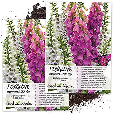 foxglove, End of 'Related searches' list