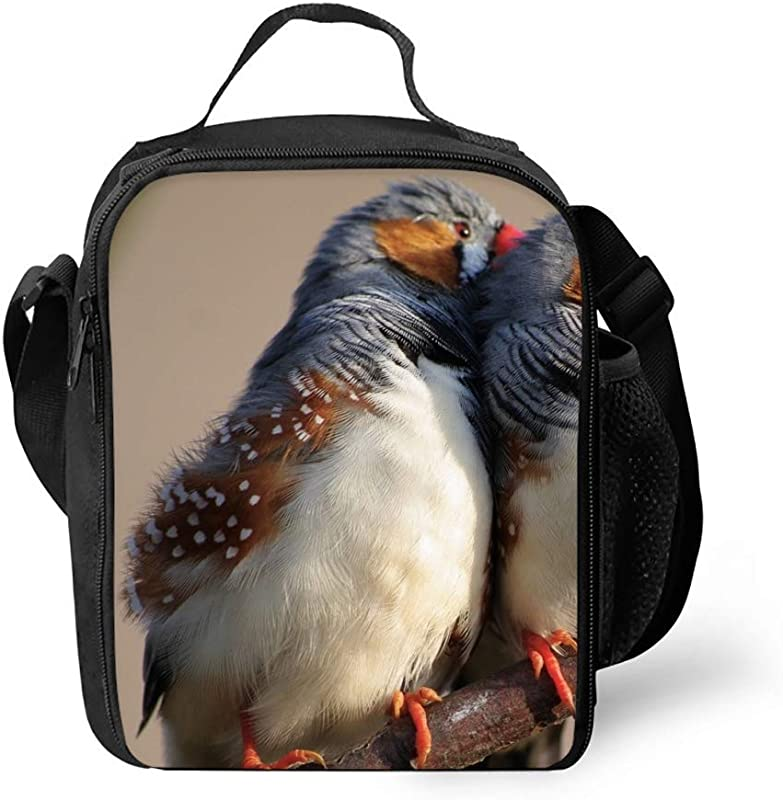 Insulated Lunch Tote Bag Zebra Finch Reusable Portable Lunchbox Handbag