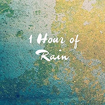 1 Hour Rain - Relaxing and Calming