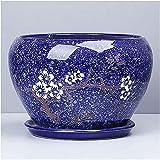 Flower Pot Ceramic Extra