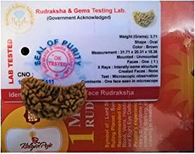 1 Mukhi Certified Rudraksha