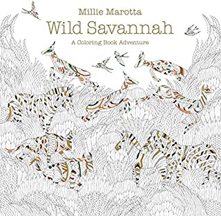 Best wild savannah colouring book Reviews
