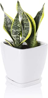 Greenaholics Succulent Pot - 5.1 Inch Square Ceramic Planter with Saucer, Flower Pot for Indoor Plant, with Drainage Hole, White