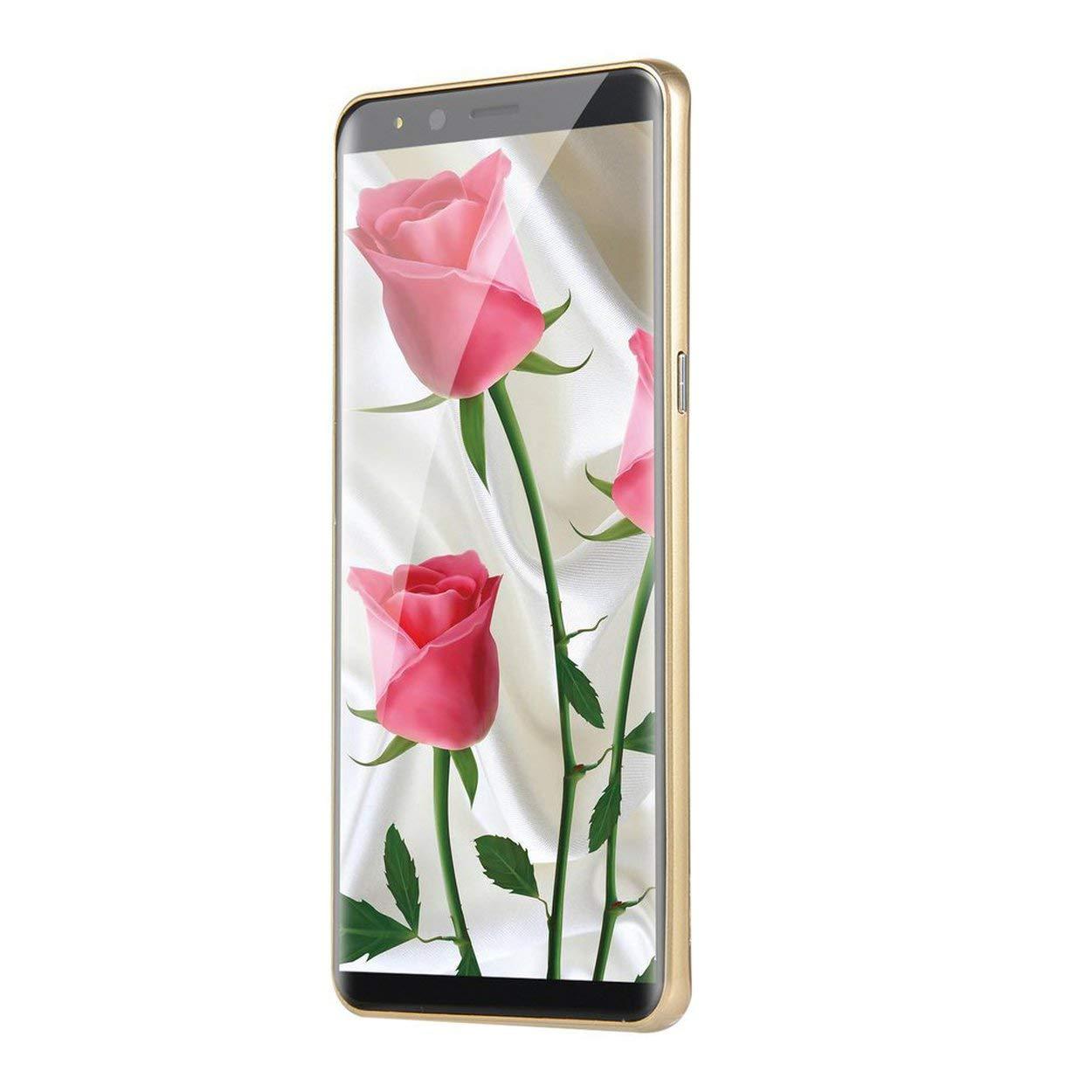 Lorenlli Moda 5.7 Pulgadas Dual HDCamera Smartphone Android 6.0 IPS Pantalla Completa gsm / WCDMA Pantalla táctil WiFi GPS 2G Llamada: Amazon.es: Electrónica