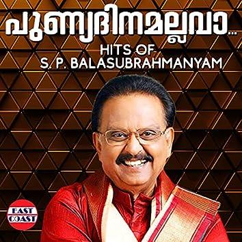 Punyadinamallava, Hits of S. P. Balasubrahmanyam