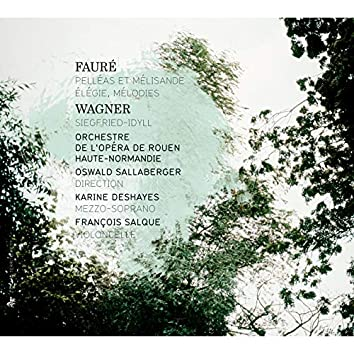 Fauré: Pelléas et Mélisande, Élégie & Mélodies - Wagner: Siegfried-Idyll