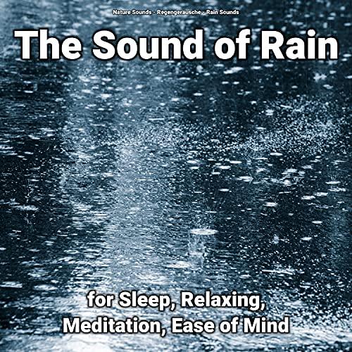 Rain Sounds to Focus