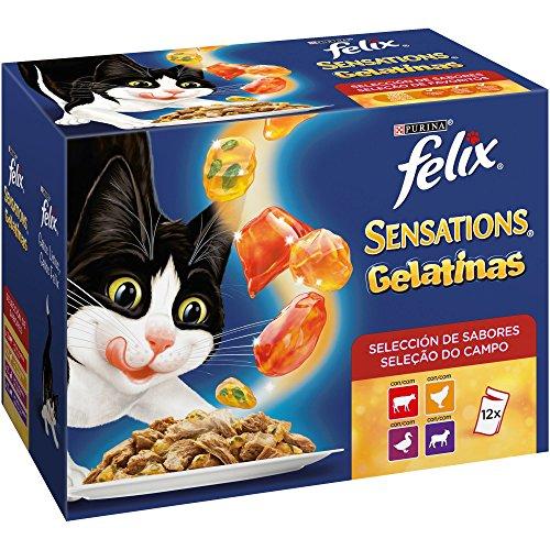 Purina Felix Sensations Gelatinas comida para gatos Selección Surtido de Carnes 6 x [12 x 100 g]
