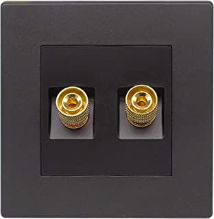Insputer Speaker Wall Plate Audio Wall Socket Banana Binding Post Socket Outlet for Home Speaker Box Terminal Subwoofer Stereo (2 Ports, 1 Pack)