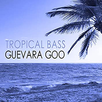Tropical Bass