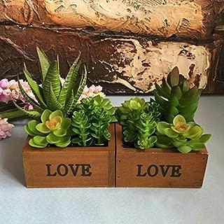 Global Brands Online Love Cuenca de Madera Desktop Lotus Plantas suculentas Planta de Flores Jardãn Bonsai