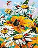 OKOUNOKO DIY Kits de Pintura al óleo por números Pequeña Margarita para Adultos y Principiantes de Dibujo Tienen Marco para la Pared del hogar, 80x100 cm