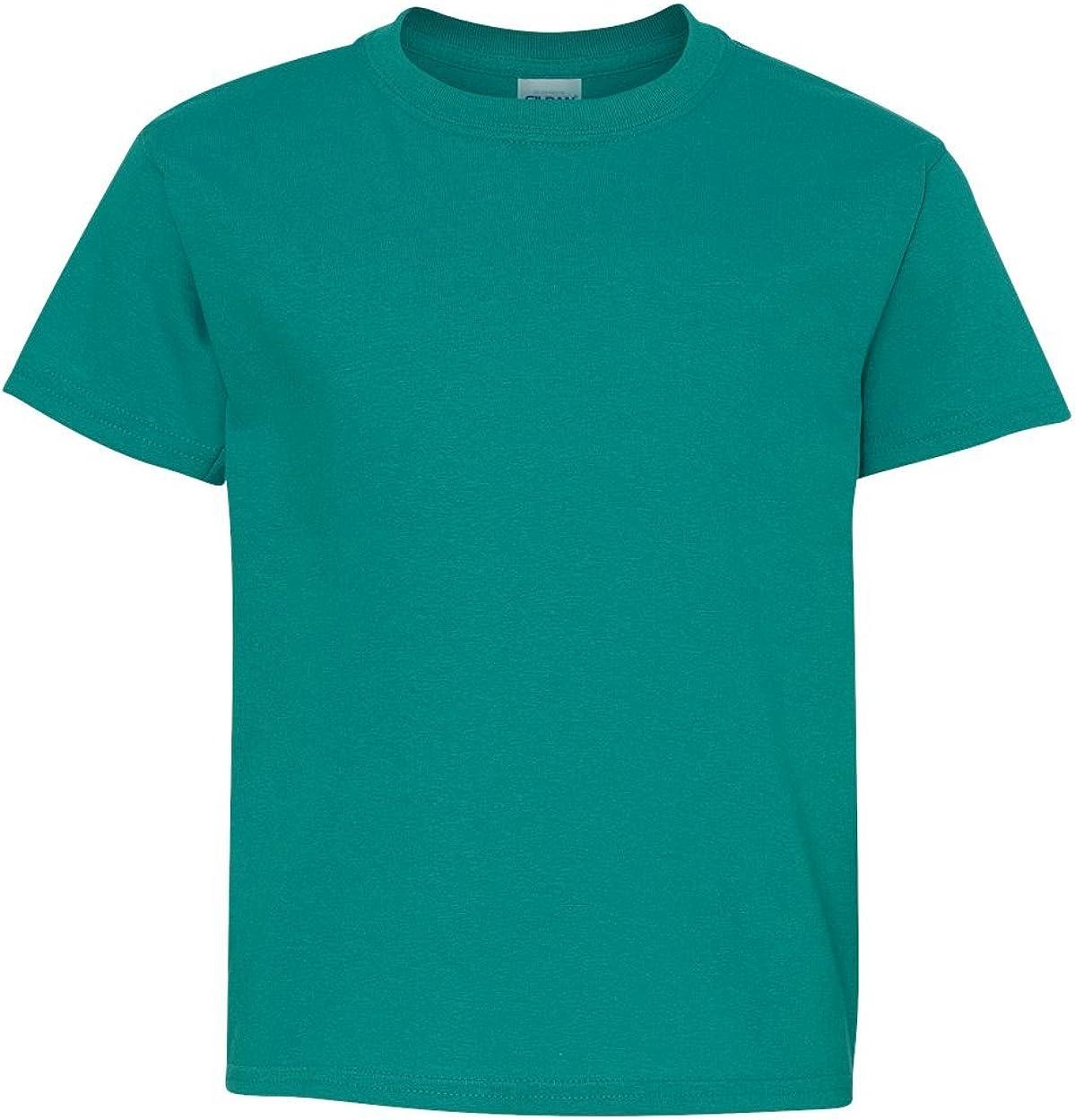 Gildan boys Heavy Cotton T-Shirt(G500B)-TROPICAL BLUE-XS