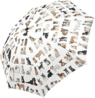 InterestPrint Various Puppy Dogs Windproof Automatic Folding Travel Umbrella, Lightweight Compact Auto Open and Close Umbrella with UV Protection
