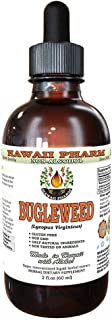 Bugleweed Alcohol-FREE Liquid Extract, Organic Bugleweed (Lycopus Virginicus) Dried Leaf and Flower Glycerite 2 oz