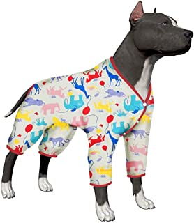 boxer clothes dog