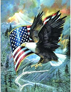 SUNSOUT INC American Eagle 500 pc Jigsaw Puzzle