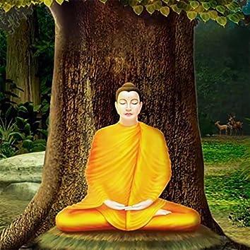 Universal Love of the Buddha