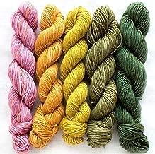 Manos Del Uruguay Silk Blend Fino Mini-Skein Set 4 Dorothea, 5 x 20g, Merino Silk Hand Dyed Yarn
