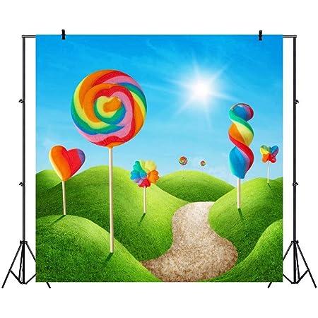 Wofawofa Vinyl 7X5FT Girls 1st Birthday Backdrop Sweet Baby Shower Gingerbread House Rainbow Candy Lollipops Grass Meadow Cartoon Photography Background for Princess Birthday Photo Studio Props KX422