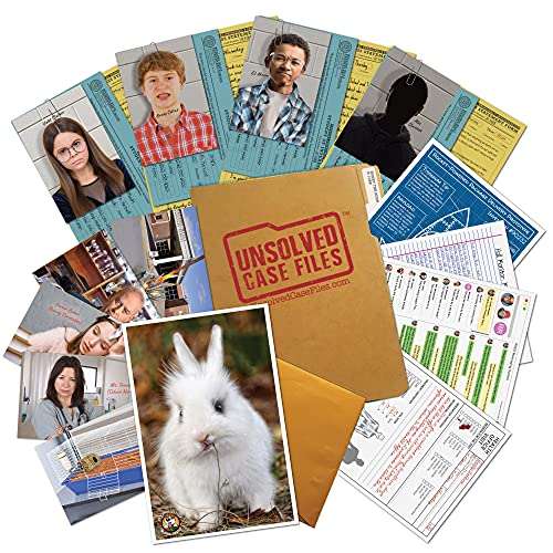 UNSOLVED CASE FILES   Honey The Bunny - A Family-Friendly Mystery Case to Solve