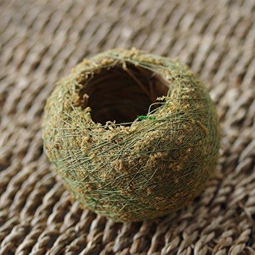 Naturel sec mousse Boule bonsaï Vert Sphaigne Substrat Boule de plantation (1pc)