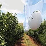 Agfabric 20ft x 50ft Anti Hail Netting, Bird Netting Alternative - Protect Fruits and Plants from Hail Damage, White