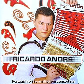 Portugal no Seu Melhor em Concertina