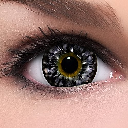 Circle Lenses lila Nudy Violet ohne Stärke + Behälter I 15mm I weich I 3 Monate anwendbar