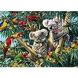 Bricolaje pintura diamante 5D por Número Kit completo Loros koalas,Diamond Painting Grande Square Bordado Punto de Cruz Cristal diamante Artes para decoración de la pared hogar Regalo(45x60cm,18x24in)