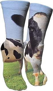 Two Cute Cats Socks Crew Sock Crazy Socks Long Tube Socks Novelty Fun for Women Teens Girls