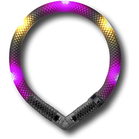 Leuchtie Leuchthalsband Mini Hotpink Vanille Größe 25 I Zweifarbig Bicolor I Led Halsband Extra Für Kleine Hunde I Wasserdicht I Enorm Hell Haustier