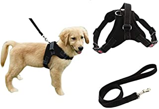 Heavy Duty Adjustable Pet Puppy Dog Safety Harness with Leash Lead Set Reflective No-Pull Breathable Padded Dog Leash Coll...