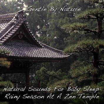 Natural Sounds For Baby Sleep: Rainy Season At A Zen Temple - Single