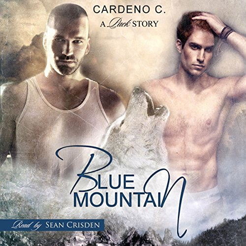 Blue Mountain audiobook cover art