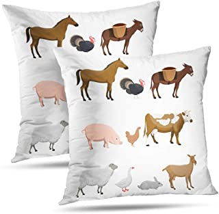HAPPYOME Animal Decorative Throw Pillow Covers, Farm Animals Horse Turkey Pig Chicken Cow Rabbit Pillow Covers for Bedroom Livingroom Sofa Set of 2 18X18 Inches,Farm Animals Horse