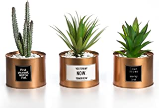 Opps Mini Artificial Plants Plastic Green Grass Cactus with Special Golden Can Pot Design..